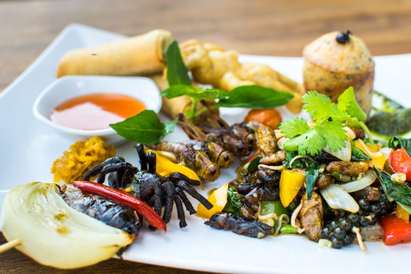 Menu Plateau Insectes Restaurant Cambodge