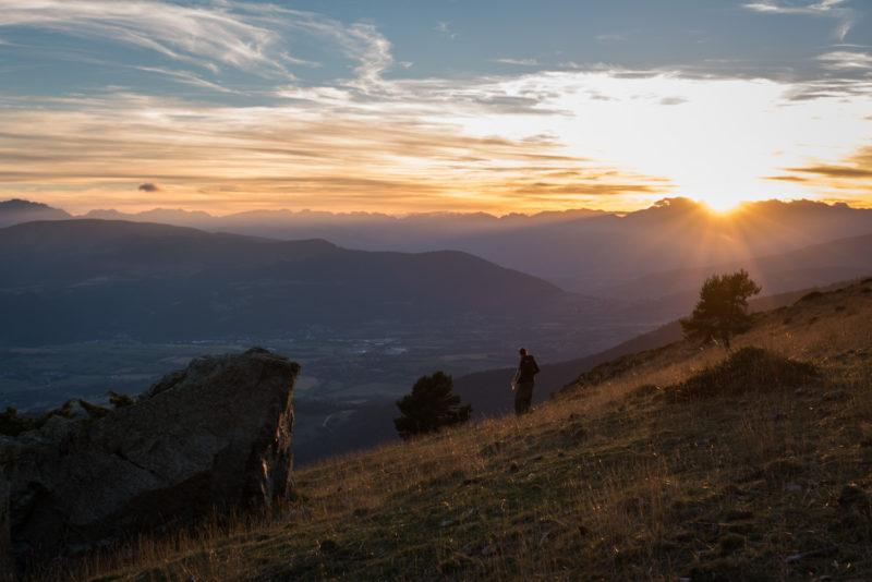 Parc Des Ecrins - Alpages - Alpes